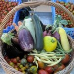 Rainbow Farms Farmers Market Anguilla