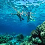 things to do on anguilla snorkeling
