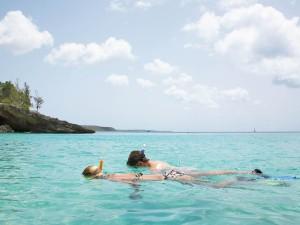Snorkelers Anguilla